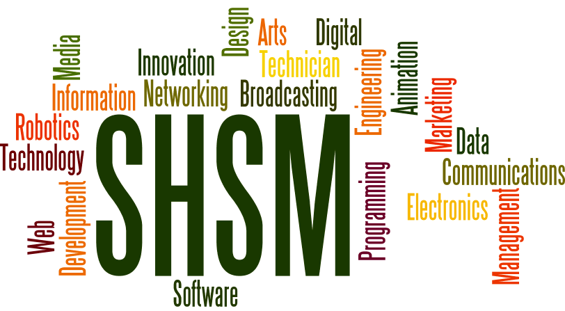 ICT shsms wordle