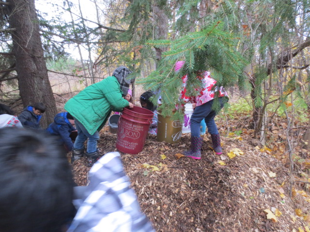 Students moving mulch