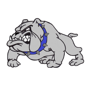 Brookview MS Mascot