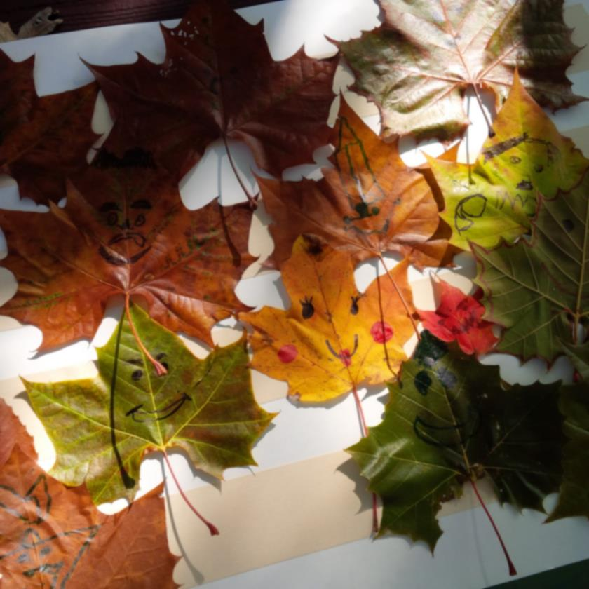 Leaves painted with Happy Faces