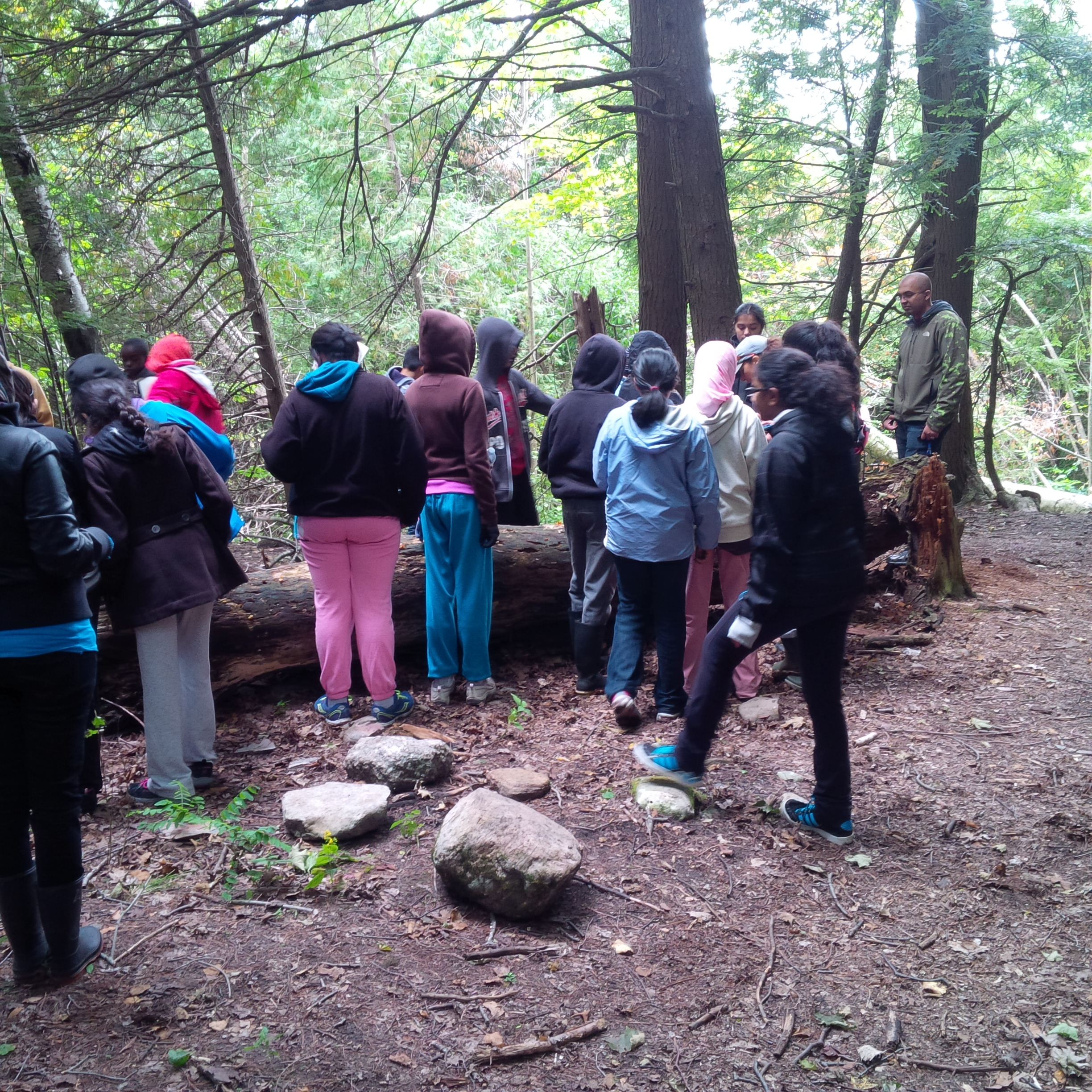 Students standing in forest
