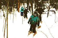 Students snowshoeing in the forest