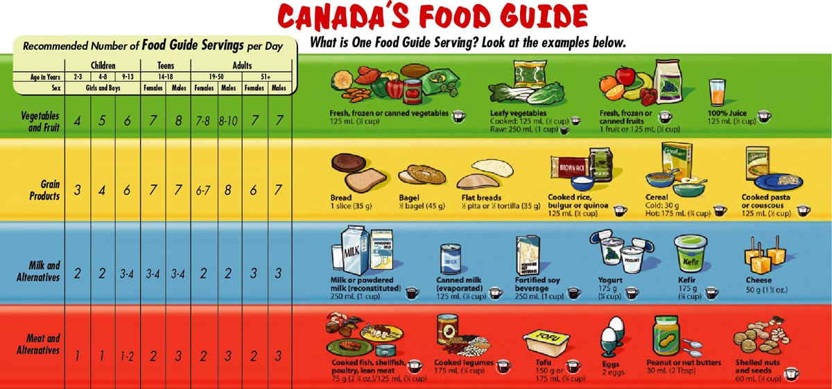 the canada food guide essay Free food intake papers, essays they must eat the recommended intake in each food group corresponding with their age and sex stated in the canada's food guide.