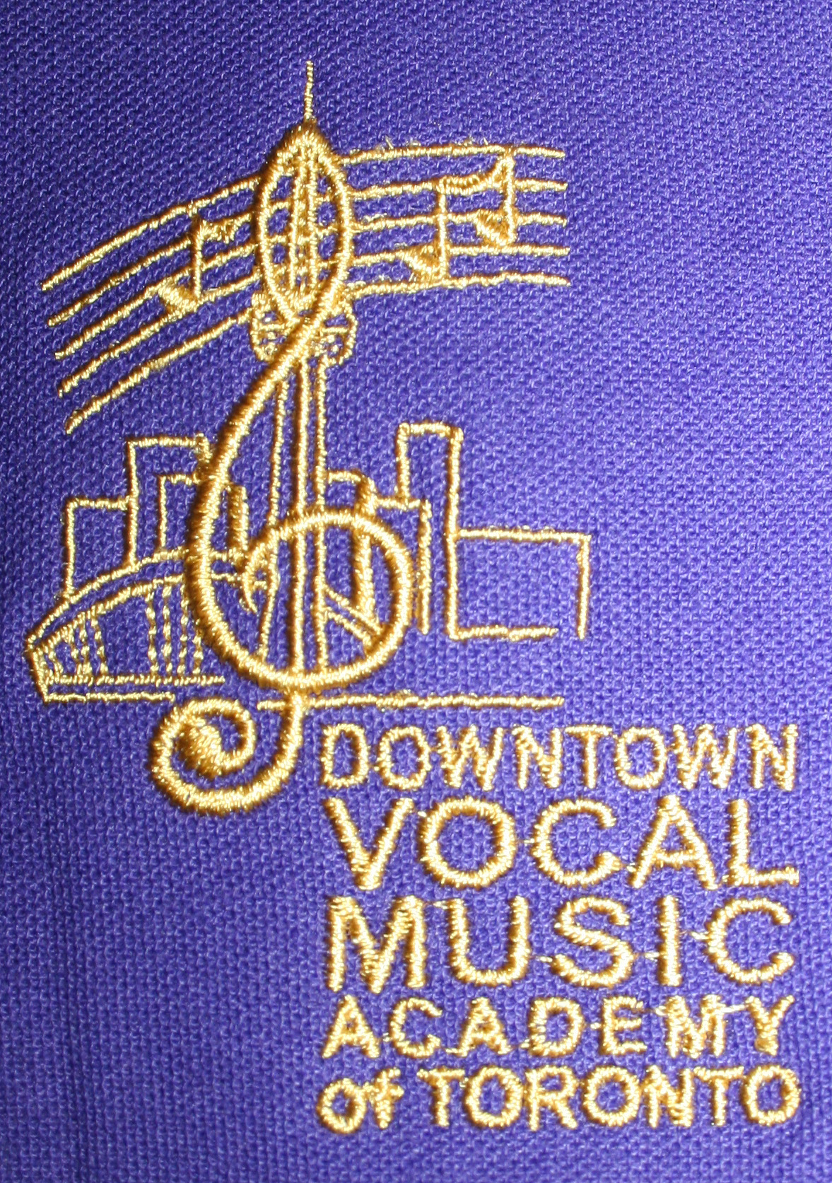 vocal music academy at ryerson community school