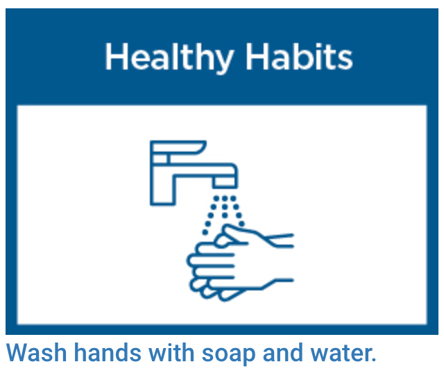 regularly wash hands and sanitize