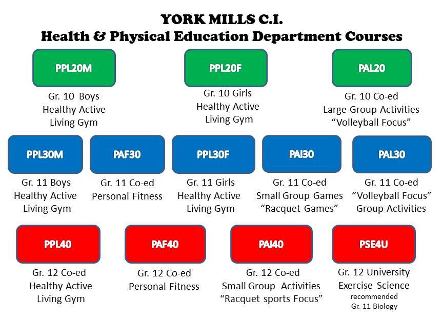 York Mills Collegiate Institute > Departments > Health and
